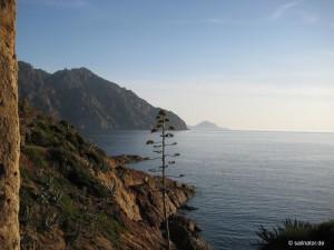 Around Corsica