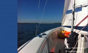Sailing C55
